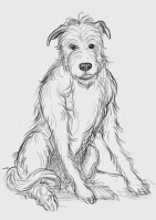Alf, Alf the Workshop Dog, children's fiction, book cover sketch, colouring picture, Once Upon a NOW